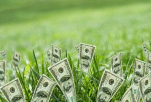 Huella de carbono: hacia una gerencia verde