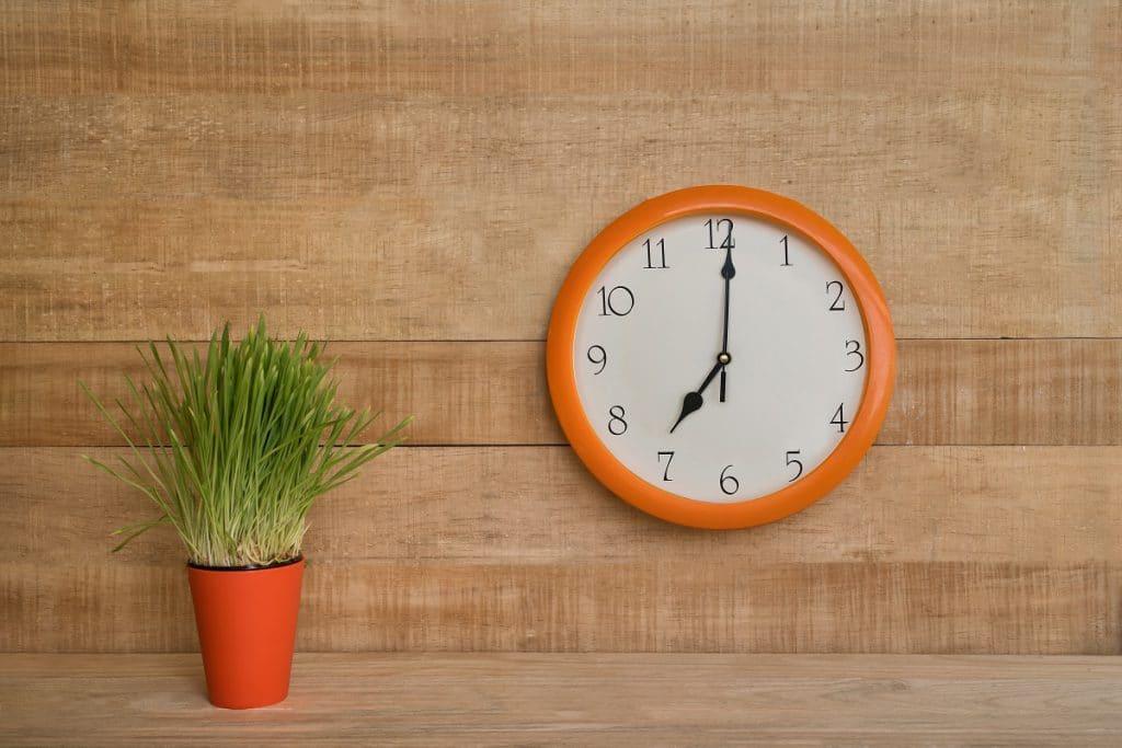 ¿Más horas de trabajo equivale a más productividad…?