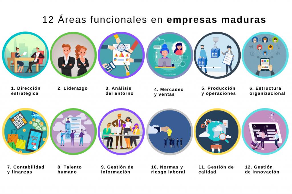 12 áreas que pueden estar presentes en empresas maduras