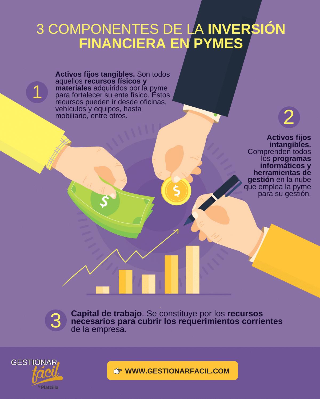 componentes de la inversión financiera en pymes