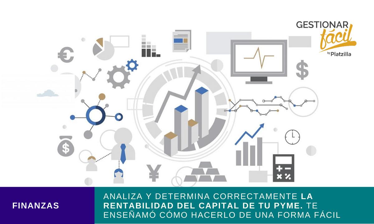 rentabilidad del capital