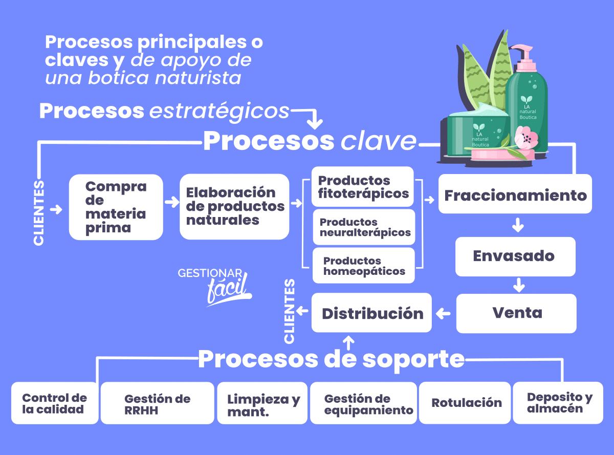 Ejemplo de procesos principales y de apoyo de una empresa de medicina natural