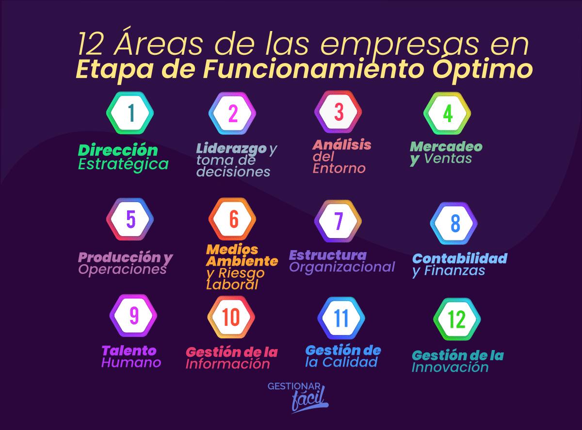 Modelo de 12 áreas funcionales en empresas maduras